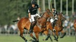 Ellerstina Polo Team