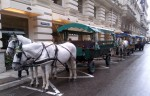 Horse driven carriage at Mandarin Oriental Munich, Octoberfest