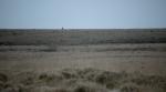 John Lobb's stunning ad campaign film 'A Singular Journey'