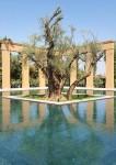 Mandarin Oriental, Marrakech - gardens